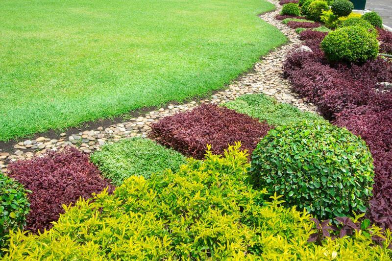 landscaping hamilton nz